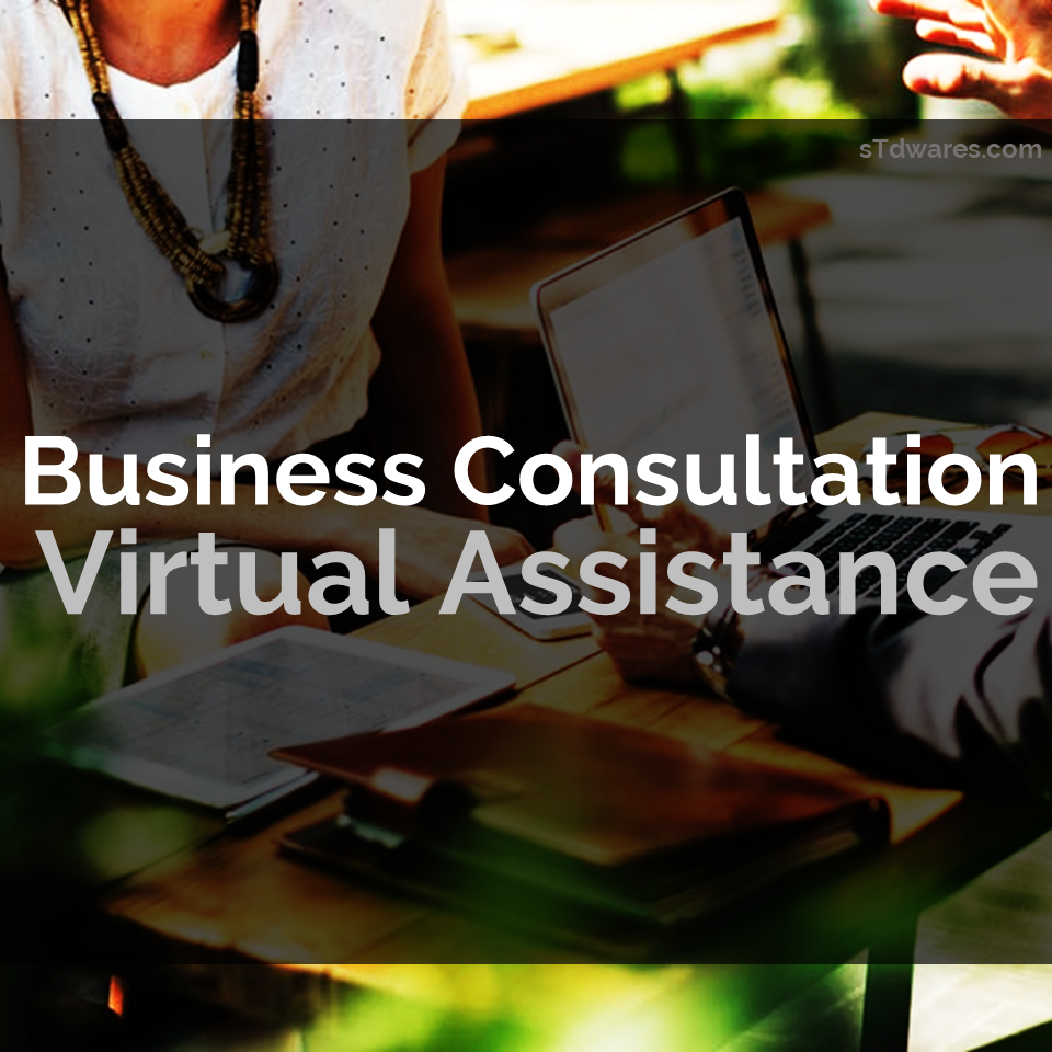 sTdwares Freelancing Venture - Business Consultation Virtual Assistance